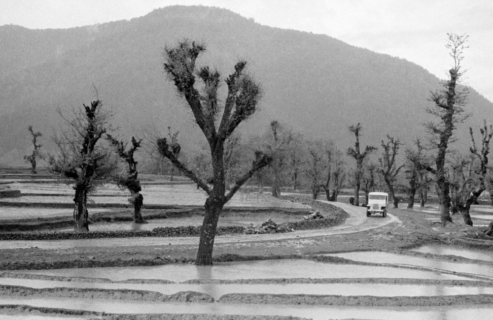 This picture sows a jeep of the UN Military Observer Group in India and Pakistan coming down a typical Kashmir road. The observers were on their way to the cease-fire line, where they were to investigate an incident. (01 January, 1955, Kashmir)